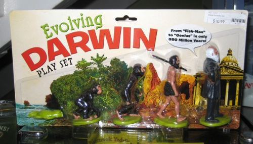 evolving_darwin_playset