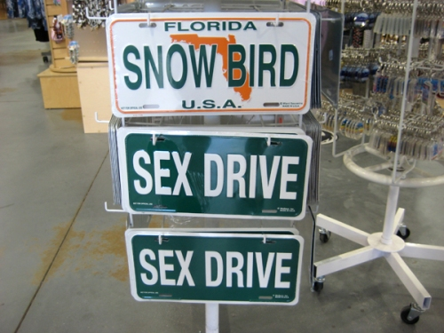 snow-bird-sex-drive
